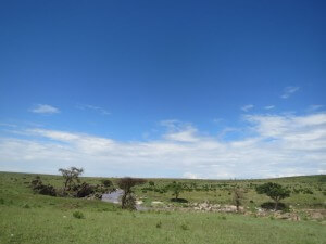 Sand River Camp in the Maasai Mara. Our favorite of the trip.