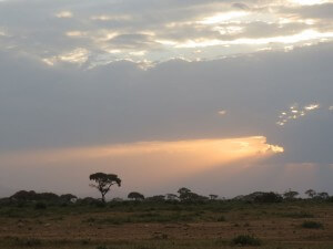 We enjoyed three weeks of sunsets on the African plains.