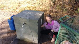 The water taps at Savuti require a human hand to turn on -elephant and baboon proof!